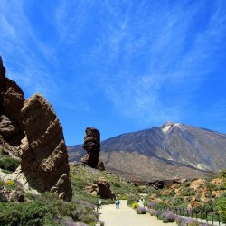 Top 8 Things to Do in Tenerife