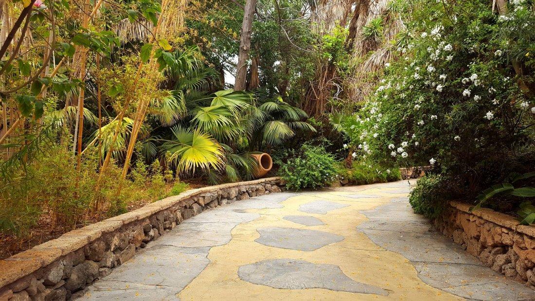 Jungle pathway in Jungle Park