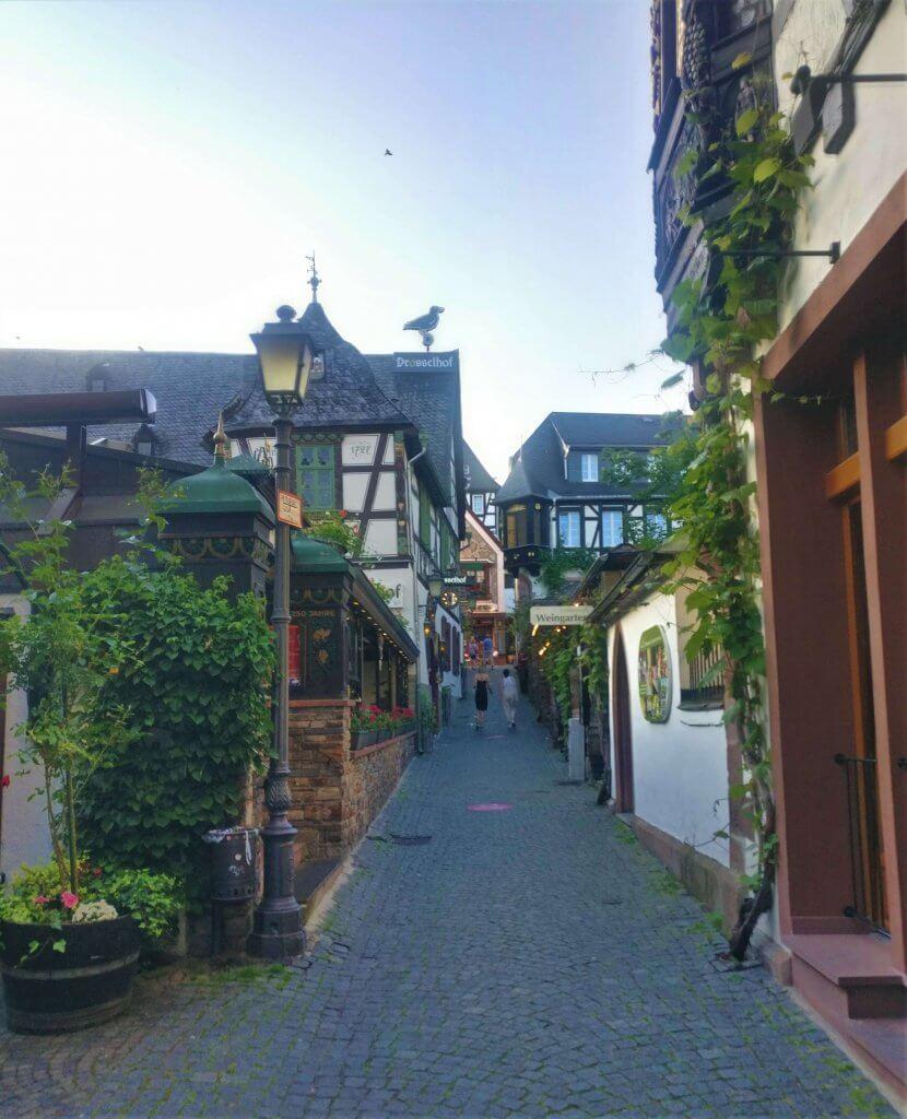 Drosselgasse in Rudesheim am Main, Rhine Valley