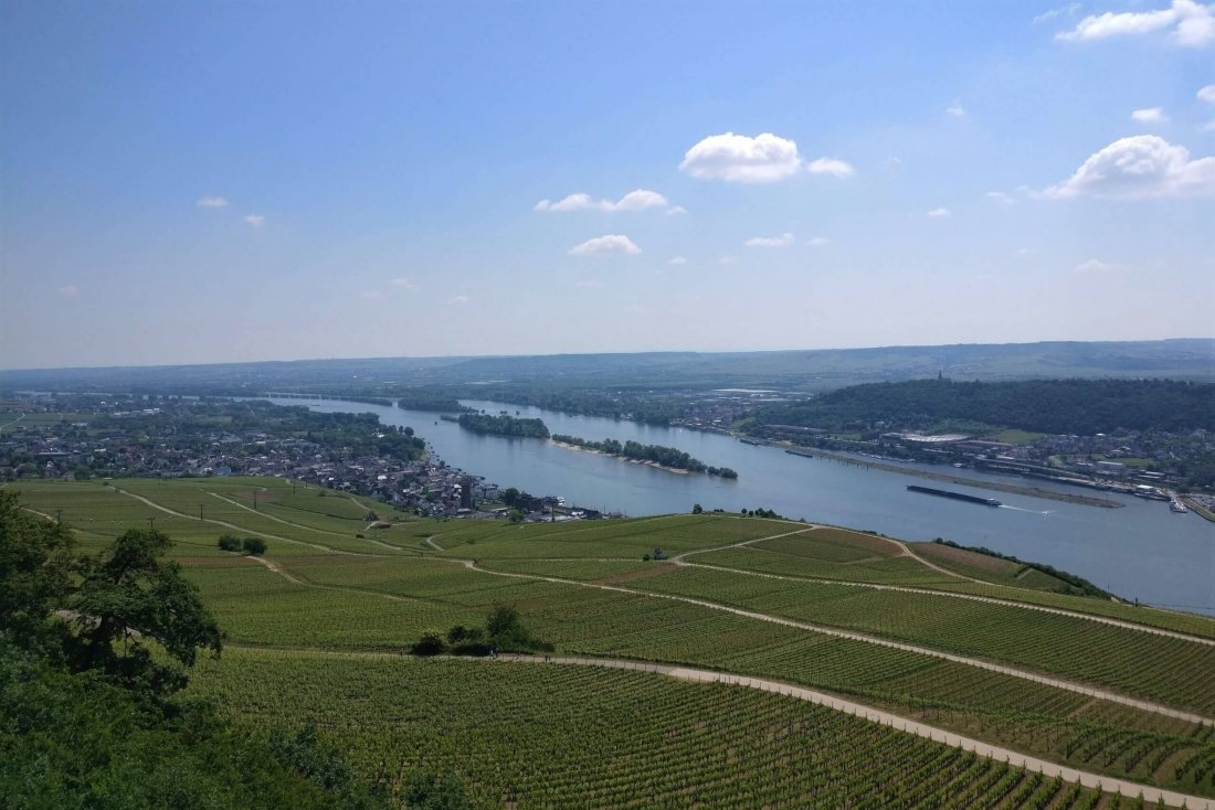 View from Niederwaldtempel, Rhine Valley